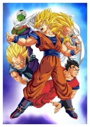 DRAGON BALL, CMX-252
